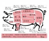 豬肉部位圖